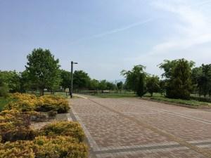 西公園 ランニング