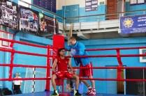 бокс (5)