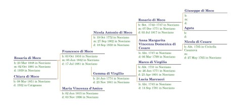 Pedigree Chart for Rosaria & Chiara di Meco