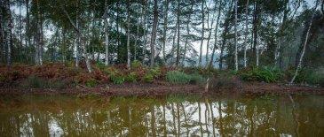 geopark-luk-muzakowa-kolorwe-jeziora-na-geosciezce