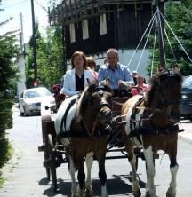 Bryczka - Agroturystyka Na skraju Parku Mużakowskiego
