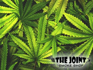 The Joint Smoke Shop Fort Collins