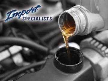 Import Specialists Auto Repair Service, Fort Collins
