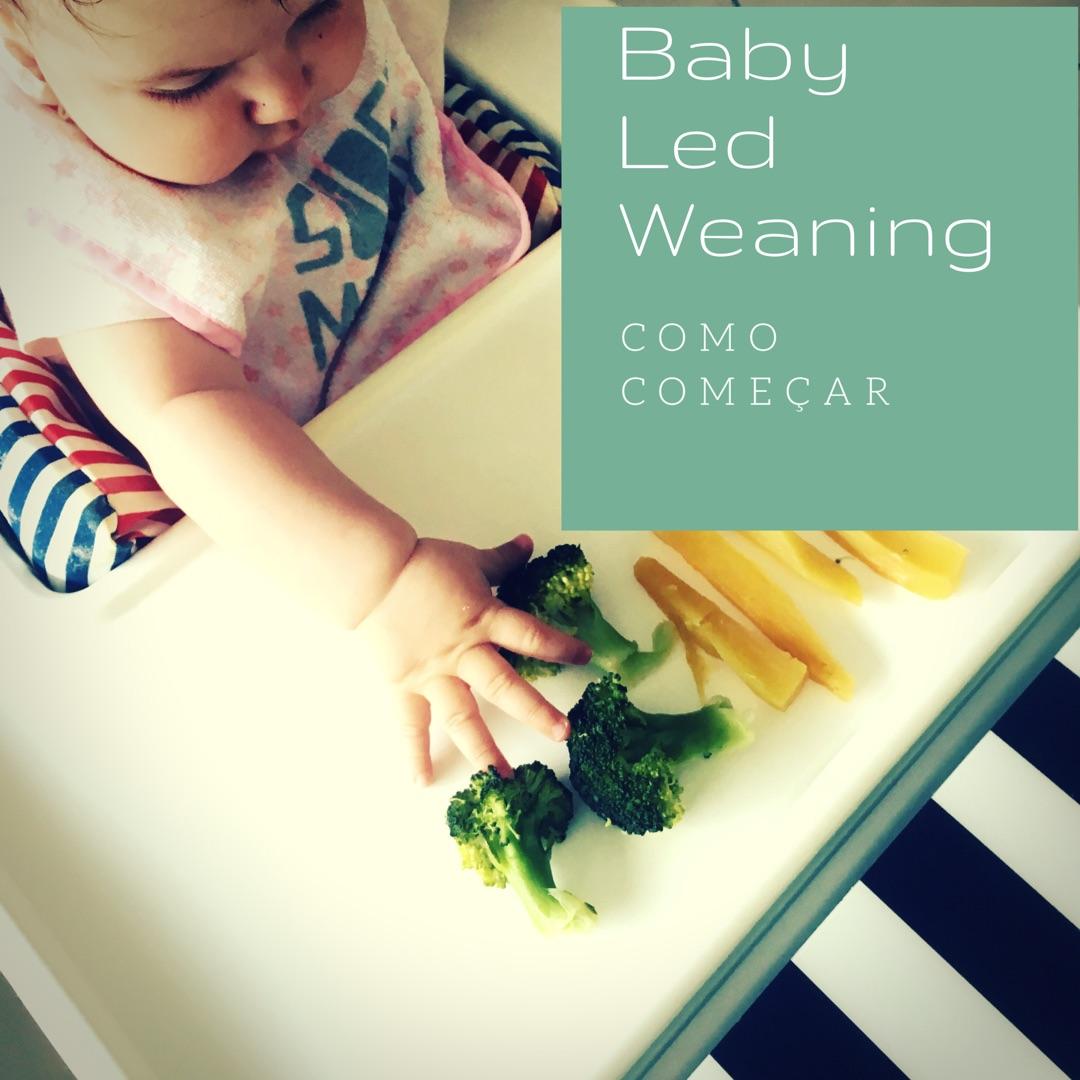 Baby Led Weaning para totós - Como começar