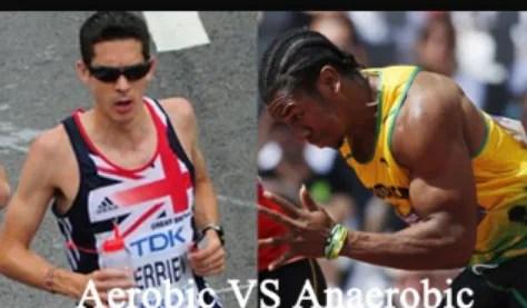 aeróbico y anaerobico