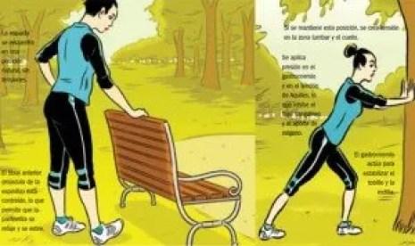 musculos del gemelo estiramientos