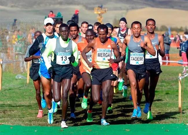 entrenar como un atleta de elite