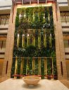 Beach Suite double faced Vertical Garden, Sofitel Palm Jumeirah, Dubai