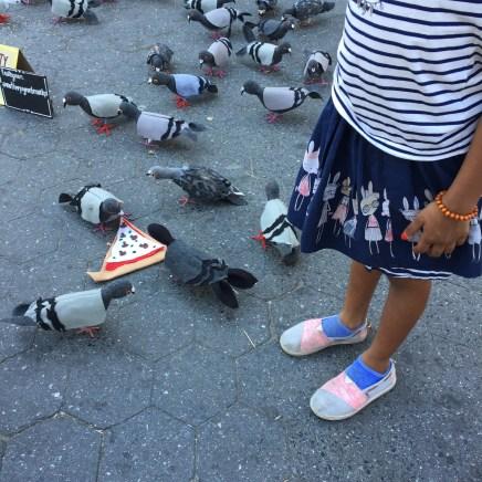 Pigeon Lady installation