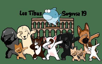 Diseño especial Gráfico Personalizado para nuestras camisetas de viaje #Tibus #Perros #AmigosPerrunos