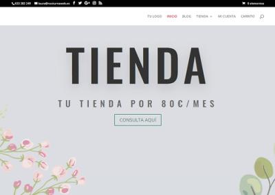 Diseño de tienda online tarifa mensual