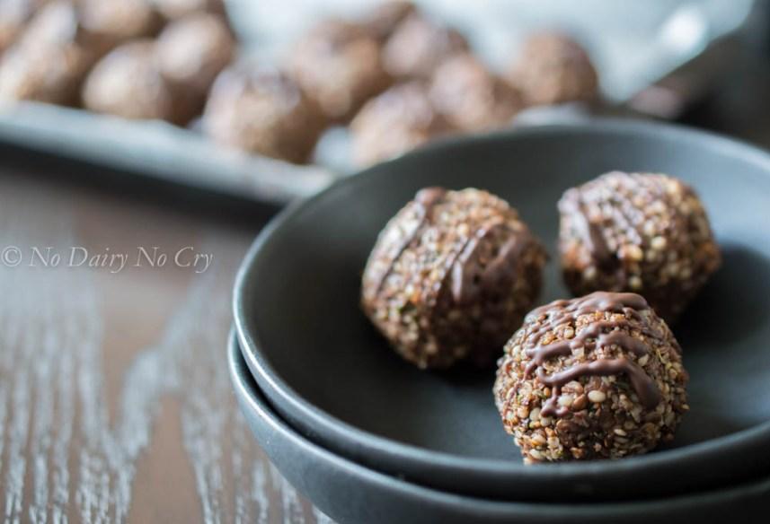 protein balls6