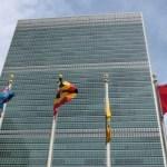 Myth: UN calls for small-scale organic farming