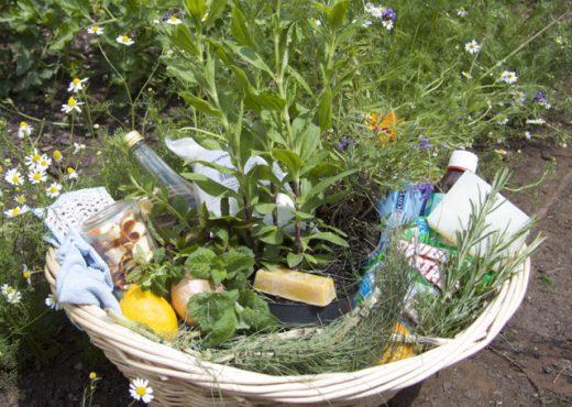 cropped-herb-basket1.jpg