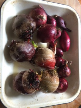 beetroot ready to be roasted