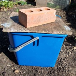 put a lid on and leave for 2 weeks