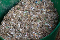 Shredded animal bedding - the gerbils are especially good at turning card into composting material