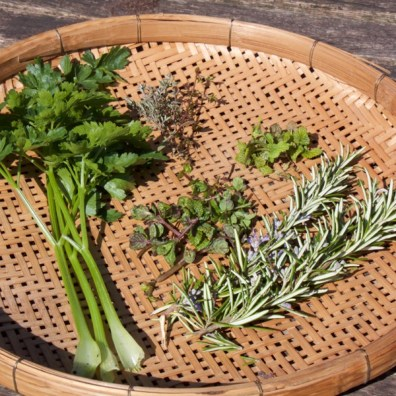 Selection of herbs