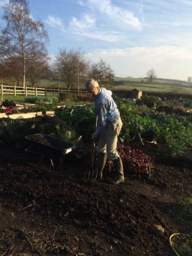 Charles spreading mulch, November 14