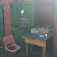 Allotment sharing shed