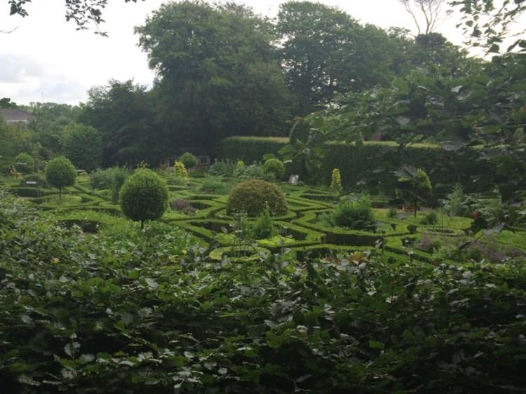 Ballymaloe herb garden
