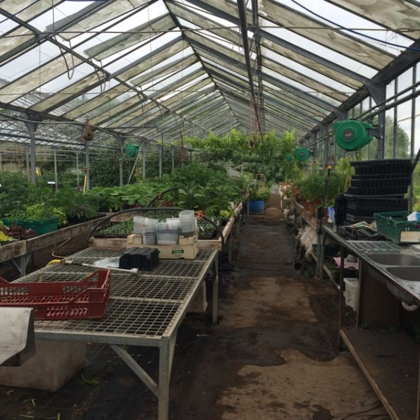 Propagating benches