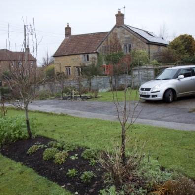 fruit trees and the front of the garden