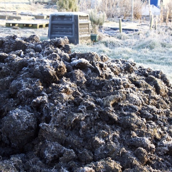Frosted manure