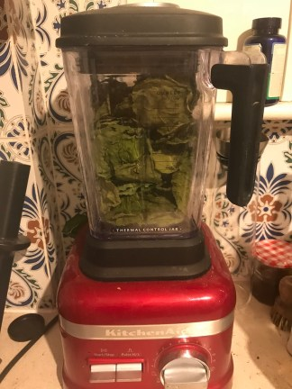 dried leaves in a blender