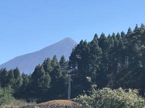 the volcano behind a forest