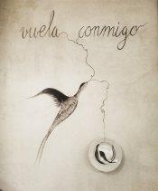 carlos villoslada (17)