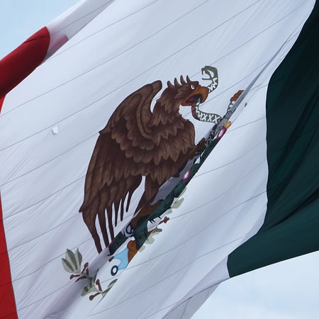 Curso Inmersión a la cultura mexicana