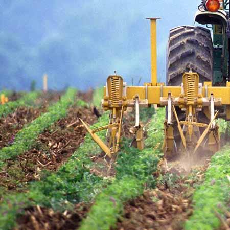 Unidad de Aprendizaje Administración de la producción agropecuaria