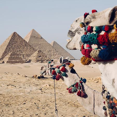 Curso Arte y vida en el Antiguo Egipto