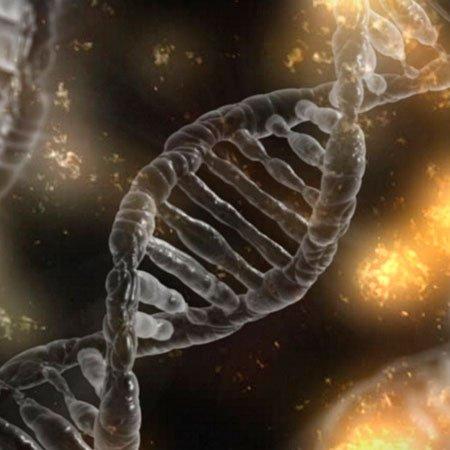 Unidad de Aprendizaje Genética Básica