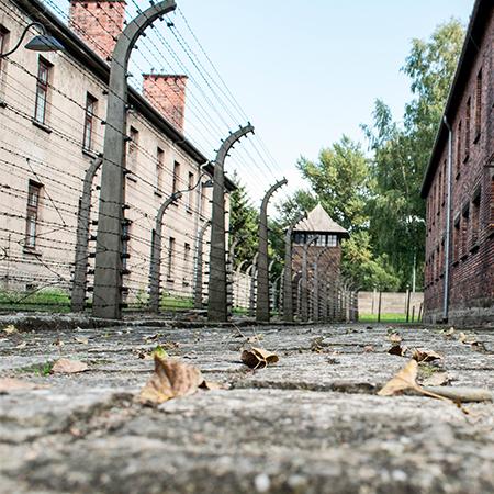 Curso El Holocausto