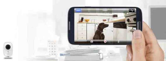 Cámara Belkin Netcam HD+ Wi-Fi