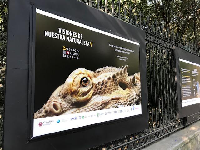 Visiones de Nuestra Naturaleza en el Bosque de Chapultepec