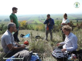 Pflegeeinsatz des Landes im Naturschutzgebiet Spitzerberg in Prellenkirchen | Foto: Berg-und-Naturwacht.org