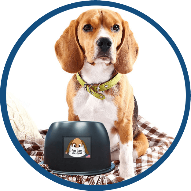 A Beagle with the No Ears in Here Bowl