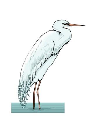 No Egrets Estate Sales