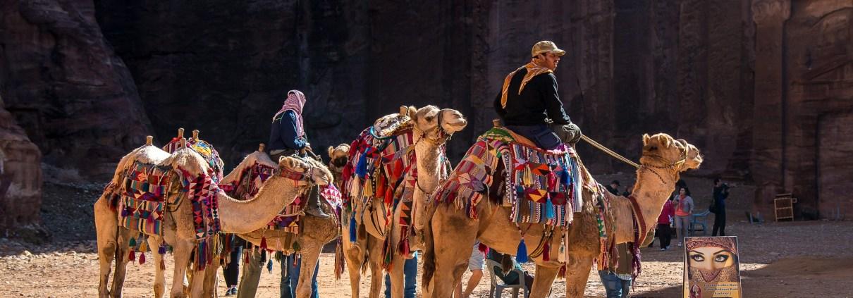 https://pixabay.com/en/jordan-petra-camel-dromedary-1846284/