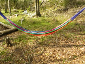 Low-Hanging Hammock