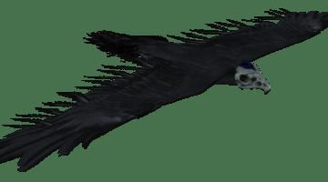 Bone Hawk