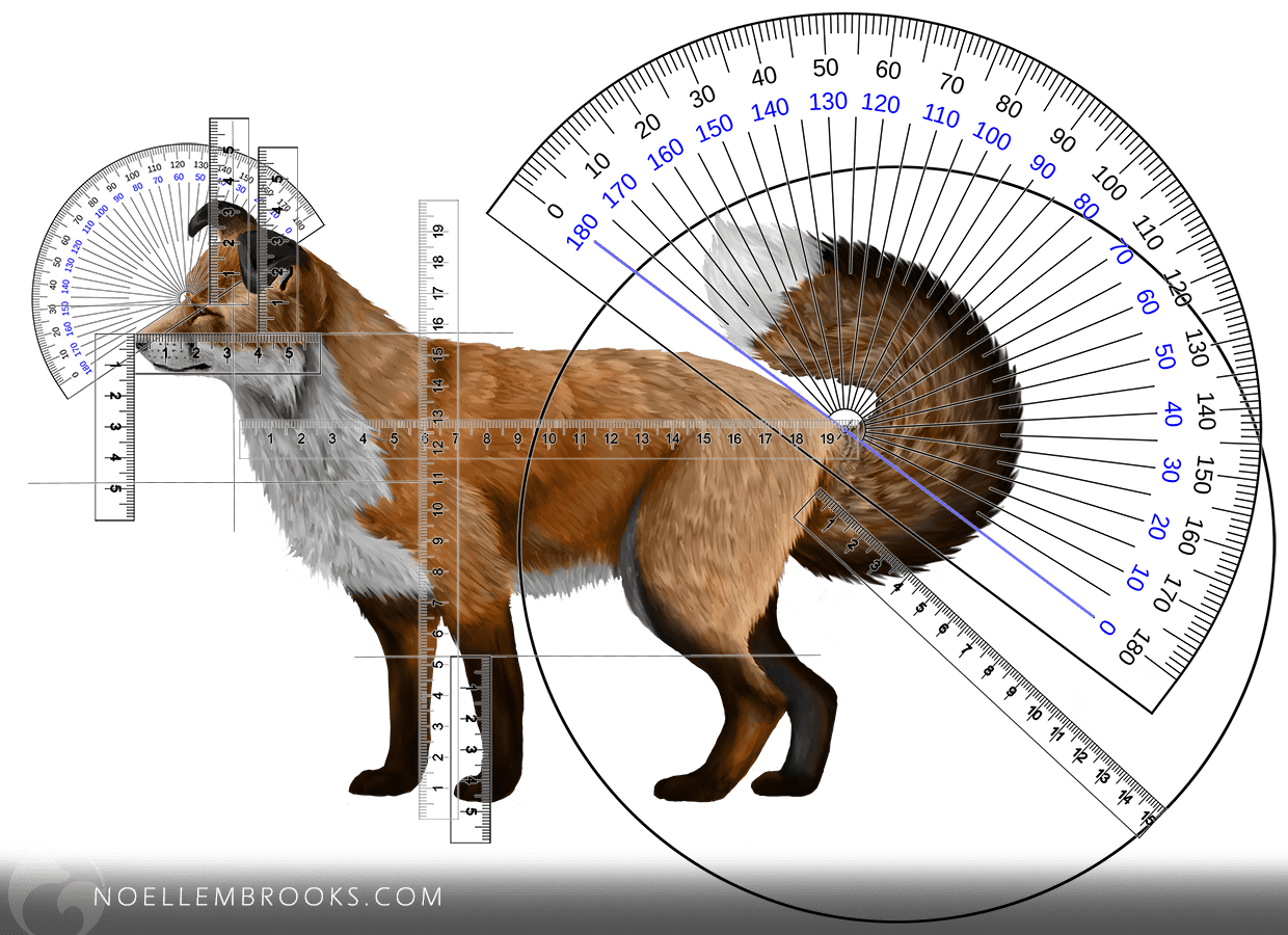 Composite Red Fox Calculations