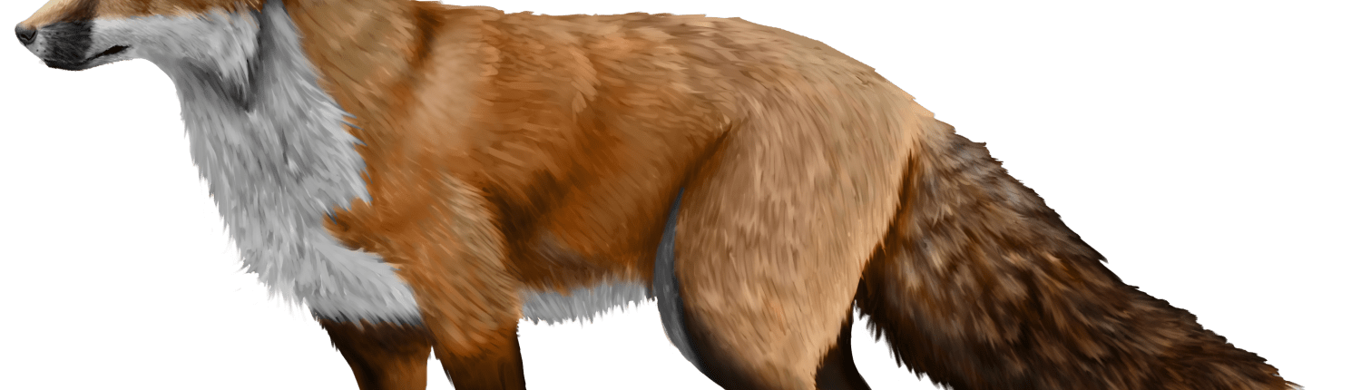 I The History Of Fox Domestication At The Institute Of Cytology And Genetics Of The Russian Academy Of Science Experimental Fox Farm Noelle M Brooks