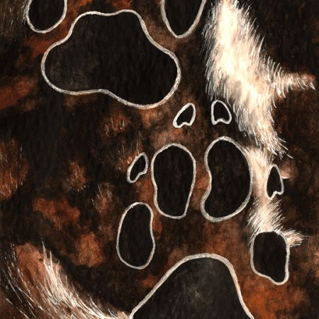 african wild dog, wild dog, african painted dog, painted dog, canine, dog, tracks, pawprint, pawprints, footprint, footprints, fur, pattern, patterns, patterned, watercolor, watercolors, watercolour, watercolours, painting, paint, paints, realism, realistic, animal, animals, wildlife, nature, noelle, noelle brooks, noellebrooks, noelle m brooks, noellembrooks, art, series, drawing, drawings, picture, pictures, illustration, illustrations