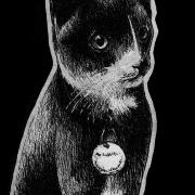 cat, cats, kitty, kitties, kittycat, kitty cat, kitty-cat, pet, pets, sitting down, full body, full-body, cute, kitten, ink, inks, pen, pens, ballpoint pen, ballpoint pens, realism, realistic, animal, animals, wildlife, nature, achromatic, black and white, black, white, grey, gray, noelle, noelle brooks, noellebrooks, noelle m brooks, noellembrooks, art, series, drawing, drawings, picture, pictures, illustration, illustrations, portrait, portraits