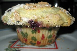Bluberry Muffin Side