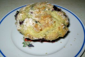 Bluberry Muffin1